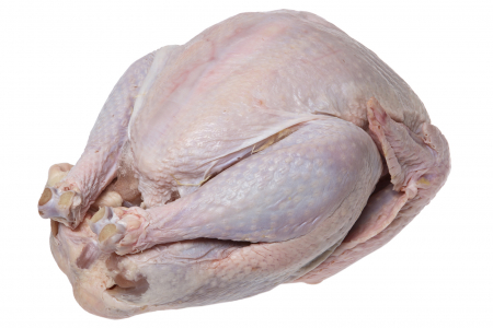 raw uncooked turkey on white